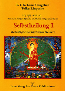 SELBSTHEILUNG I325