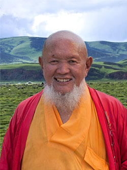 LGwhite_tibet